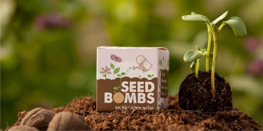 Seed bombs of earth, clay and seeds